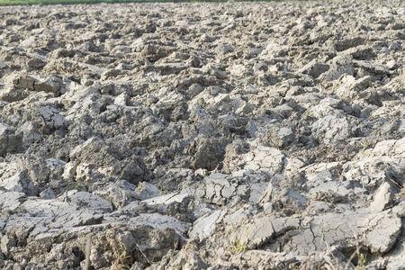 plowed: plowed field