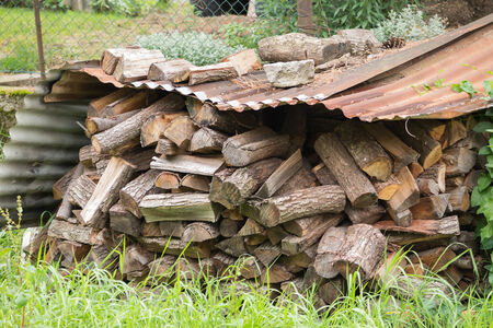woodshed: wood in the woodshed