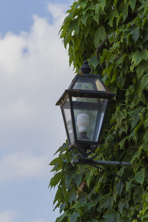 lamp in the street photo