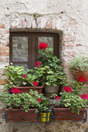 flowered: flowered balcony