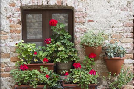 Bepflanzten Balkon Standard-Bild - 31321149