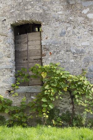 old door photo