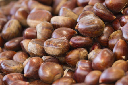 chestnuts: roasted chestnuts