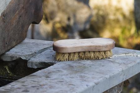 rinse: brush to wash Stock Photo