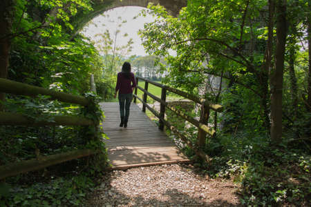 walk in: walk in the woods