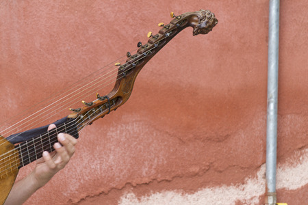 stringed instrument: playing an old stringed instrument