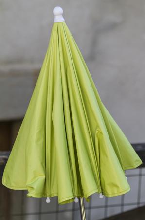 brolly: green umbrella