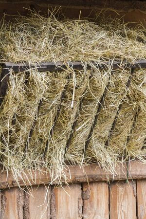 farmstead: hay in the manger