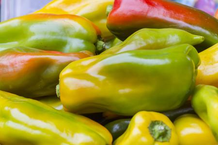 pepperoni: colorful pepperoni in autumn