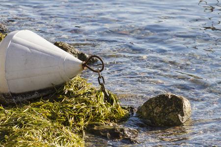 lifejacket: buoy on  lake