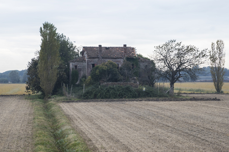 cultivated: abandoned house on cultivated field Stock Photo