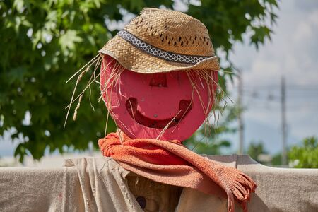 funny scarecrow in the farm
