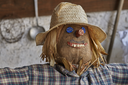 puppets: funny scarecrow in the farm