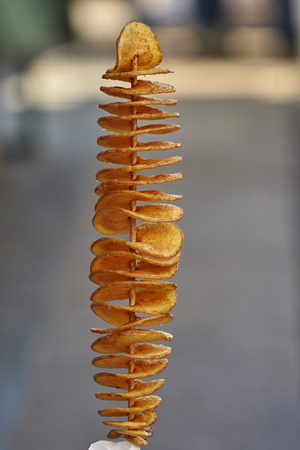 spiral french fries