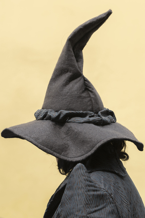 witch with black hat 免版税图像
