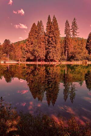 scenic landscape reflection on lake
