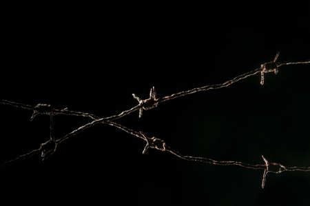 Silhouette of two lines of barbwire crossing on a black background