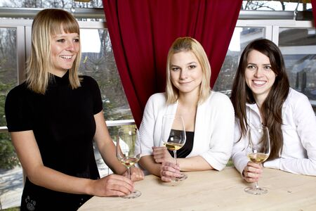 Beautiful young girls having drink in bar holding glasses Stock Photo - 9165060