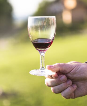 Man holding a glass of wine Stock Photo