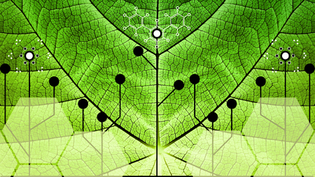 Biomimicry - Nature and Technology - Hybrid Nature - Abstract Illustration 스톡 콘텐츠