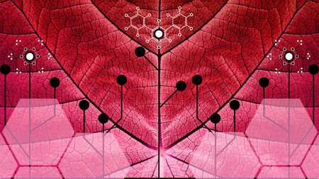 Biomimicry - Nature and Technology - Hybrid Nature - Abstract Illustration Stok Fotoğraf