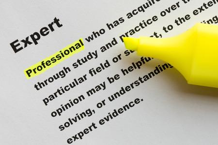 definicion: definici�n de experto
