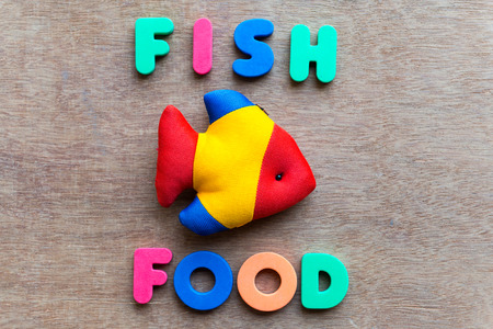 fish  food: fish food colorful word on the wooden background