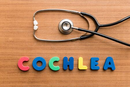 cochlea: Cochlea   colorful word with Stethoscope on wooden background
