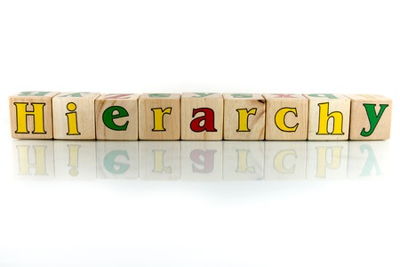 hierarchy: hierarchy colorful wooden word block on the white background