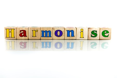 harmonise colorful wooden word block on the white background