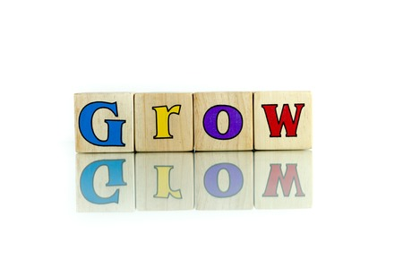 thicken: grow colorful wooden word block on the white background