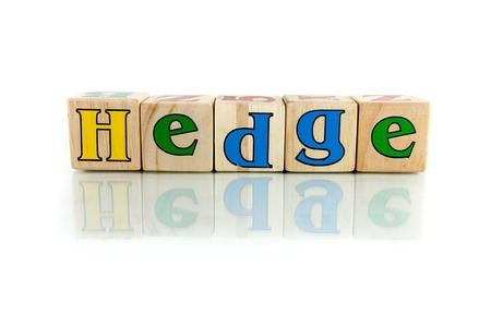 shrubbery: hedge colorful wooden word block on the white background