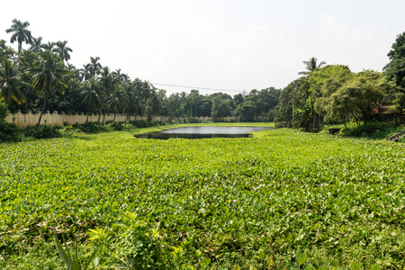 Natore, Bangladesh - September 29, 2015: pond of Uttara Gano Bhaban. It also known as The Maharaja's Palace or Dighapatia Palace is a historic, formerly royal palace in Natore, Bangladesh. It was built by the Raja of Dighapatia. In the north bengal, it se