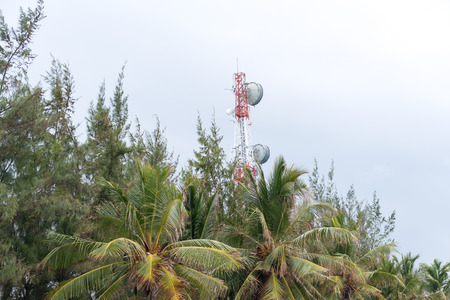 hill station tree: Telecommunication tower at a field in Maldives.
