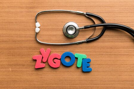 zygote: zygote colorful word with stethoscope on wooden background Stock Photo