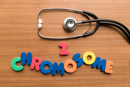 chromosome: z chromosome colorful word with stethoscope on wooden background Stock Photo