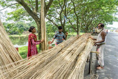 Dhaka, Bangladesh - AUG 26, 2016 : Unidentified people are processing jute on August 26, 2016 in Dhaka, Bangladesh Editorial
