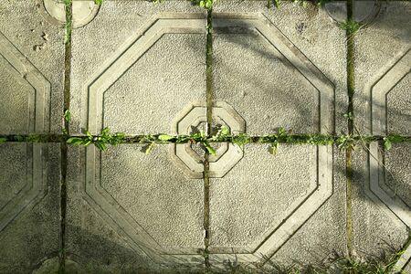 beton bestrating platen op een zonnige zomerdag.