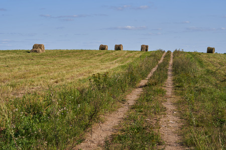 Bales of straw in a field with a blue sky.