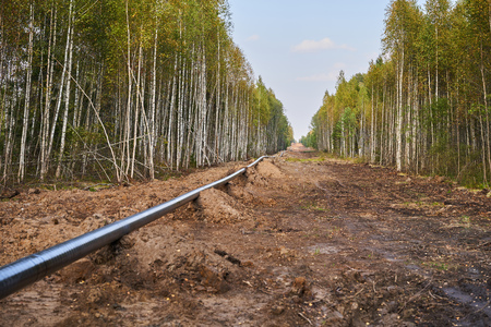 Laying of a gas pipe in the deep forest. Banque d'images