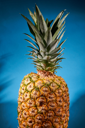 Ripe pineapple on blue background. Close-up shooting.