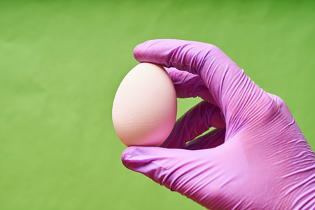 A mans hand in a blue glove holding a chicken egg.