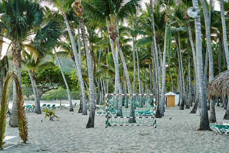 Sandy beach with palm trees and football goal. Zdjęcie Seryjne