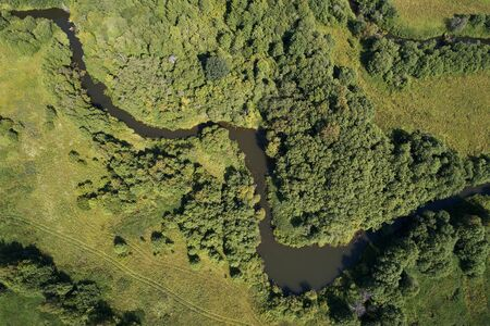 Forest with a winding river at sunset. Aerial photography with a drone
