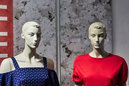 Two female mannequins in a shop window.