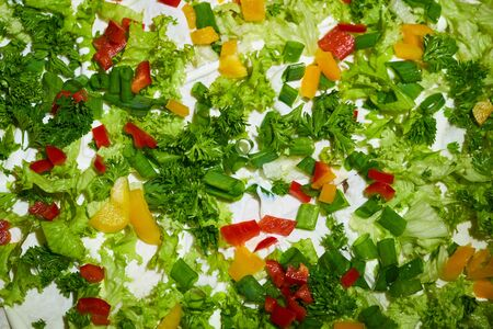 Salad of fresh vegetables with herbs. Healthy food, fresh vegetable background.