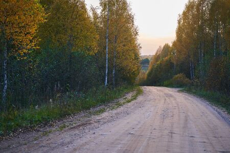 Winding dirt road through the autumn forest. Beautiful autumn landscape.