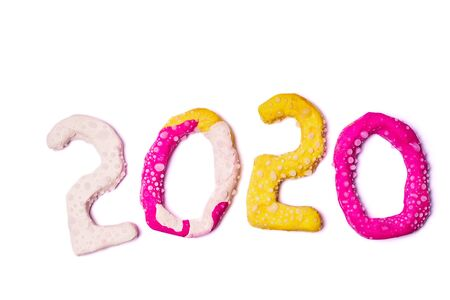 2020 New year design concept. Colored plasticine figures isolated on white background.