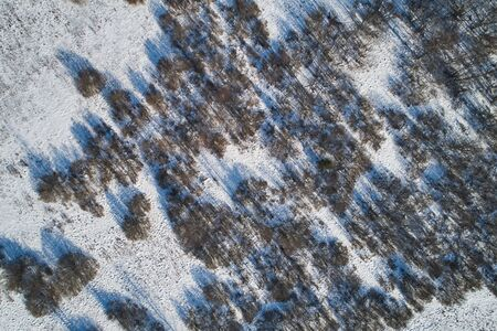 Beautiful Sunny landscape with forest and snow. Aerial photography from a drone.