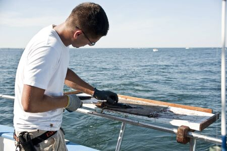 Plum Island, USA - July 2010 - Young man cleaning the fish on the fishing boat